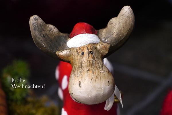 Frohe Weihnachten (c) Foto: Carola Peters